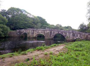 puente-brandomil